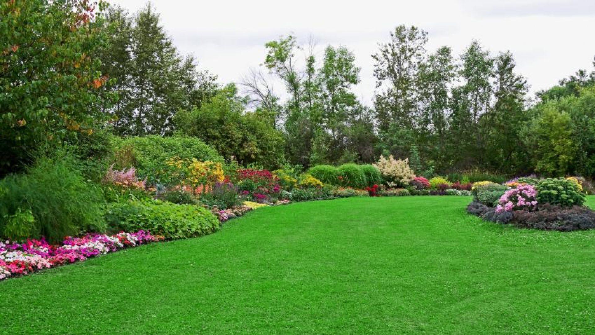 Lubbock Lawns